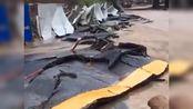 湖北十堰暴雨已致8人死亡 村民:灾情严重 回不去家
