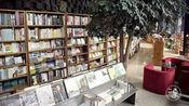 杭州这家书店与西湖齐名,老板20年开12家分店,一年仅赚2万