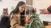 【欧阳娜娜VLOG】欧阳娜娜VLOG Nabi's special episode — CHRISTMAS TREE