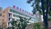 """咸阳""""40名医护被裁""""处理结果来了:妇幼保健院院长免职"""