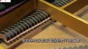 香港人的不幸生活:教钢琴的老师,有些家庭因为没有口罩,也不能来上课