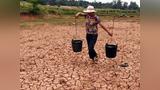 重磅!财政部下达资金8.3亿元支持各地抗旱救灾