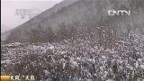 [视频]大风!大风! 河北承德:围场坝上普降中雪 气温下降 20130418