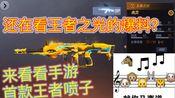 2021年王者武器储备项目曝光!首款王者喷子-【王者之炎】上线!!!【自制】
