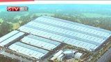 [直播重庆午新闻]西部最大的幕墙生产基地落户铜梁区