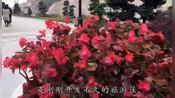 福建省福州市连江县定海湾旅游度假区