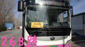 【POV-46】新线速递,神仙线路淄博公交268路(周村客运中心——大房村)全程POV