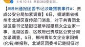 女企业家称遭区团委书记猥亵,4月6日,郴州市北湖区委、区政府已责成区公安分局加紧调查。