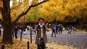 秋天来啦!超美东京【神宫外苑银杏大道】《阿伦去旅行》