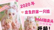 【BJD/DD】volks mdd拍卖头开箱2020年出生的第1只娃