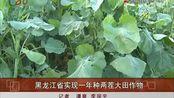 视频:黑龙江省实现一年种两茬大田作物