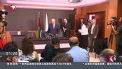 巴解组织:向国际刑事法院提交