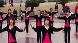 鄂州市金凤兰雪娟女子舞蹈队 广场舞:新龙船调