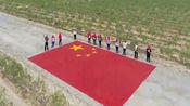 建国70周年,一吨枸杞和一百斤金灿灿的菊花成国旗,祖国我爱你