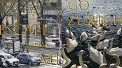 逃離陰雨米蘭,在天堂蘇黎世喂天鵝