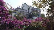 湛江荣基老板李日荣家乡房子有多豪,光装修就超2亿,真是美如画