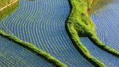 旅拍贵州省安顺市,春天里真的只有山青水秀秧苗绿悠悠!