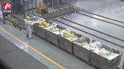 长沙市医废处置中心防护物资告急,爱心单位企业捐赠防疫物资支援