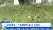 [正点财经]江苏淮安:气温骤降10℃ 出现霜冻