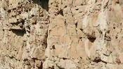 贵州大山深处,发现一具棺材悬在山崖上,这是怎么弄上去的