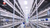 安徽省:围绕精准扶贫 因时、因地制宜精准发展特色产业