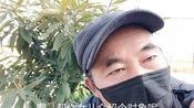 北京34岁女孩,大学毕业在国外打工,也愁嫁,爸爸很着急!
