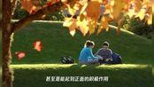 武汉大学清退92名国际学生:一视同仁才不会丢掉中国大学的威望