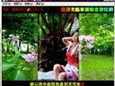 [千千电影网 www.1000dy.net]flash cs5视频教程583 水晶卷轴相册1