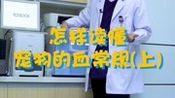 怎样读懂宠物血常规(上)?