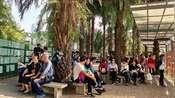 广东深圳莲花山公园相亲角,这里的8090单身女性未婚的最多