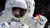 【PBS科普】尿液在太空旅行中可以用来做什么?@柚子木字幕组