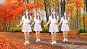 最新版广场舞《花桥流水》美女舞姿潇洒