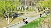合肥:天气晴好,巢湖湖畔春意浓
