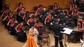 【学院派】孙凰 二胡演奏 小提琴协奏曲《梁祝》