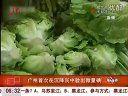 广州首次在沉降灰中验出微量碘 [新闻夜航晨光版]