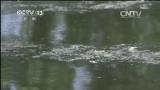 [视频]安徽:跨省污染 协调处理难度大
