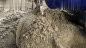 农民工师傅现场教大家制作水泥盆,学会自己也能在家做
