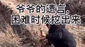 爷爷临走时说,困难的时候到家对面的南山老榆树下深挖三尺,自由解困之法