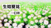 【一口井翻唱】深夜食堂插曲-生如夏花 原唱:Erika