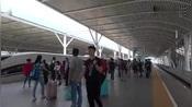 浙江宁波,高铁余姚北站,这里站台能看到整个余姚