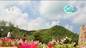 [新闻直播间]浙江安吉 绿水傍青山 乡村新画卷