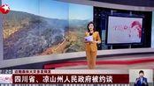 视频 近期森林火灾多发频发: 四川省、凉山州人民政府被约谈