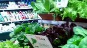 skp超市的菜是现摘现卖的,相当保鲜,何从地里采摘差不多!