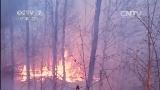 [军事报道]俄罗斯森林大火进入我国境内:武警官兵紧急出动控制大兴安岭火情