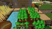【BE岩本扉】Minecraft《谷神星-原版生存》 Day 4 水利工程