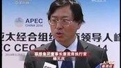 [中国新闻 ]APEC工商领导人峰会聚焦亚太新愿景
