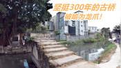 【VLOG 65】汕头鸥汀村像一条龙 这座桥是龙爪 电视台来拍过 是市级古文物!