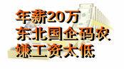 年薪20万东北国企码农,嫌工资低,想到杭州闯一闯,网友:瞎折腾