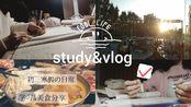 Ran//STUDY&VLOG//2019小结◇面对的那些未知◇深夜放毒◇初三の寒假日常