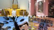 6月VLOG  MUTEMUSE X B.D. GRAFT & MY Seoul Daily Life | Two Weeks Rec